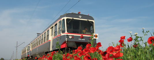 railwayengineering_special_ferrovie_del_gargano